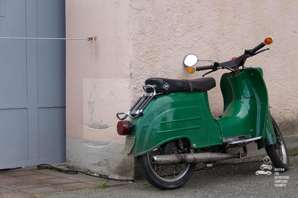 grüne Schwalbe